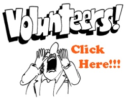 Volunteer on the Fiction Forum
